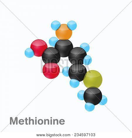 Molecule Of Methionine, Met, An Amino Acid Used In The Biosynthesis Of Proteins, Vector