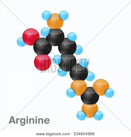 Molecule Of Arginine, Arg, An Amino Acid Used In The Biosynthesis Of Proteins, Vector Illustration