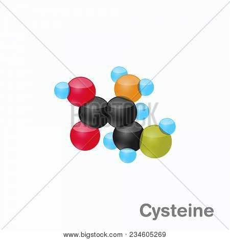 Molecule Of Cysteine, Cys, An Amino Acid Used In The Biosynthesis Of Proteins, Vector Illustration