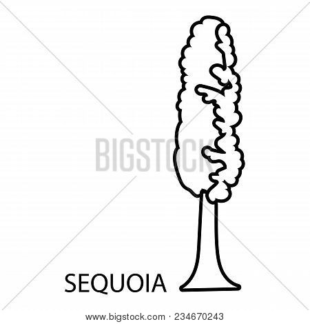 Sequoia Icon. Outline Illustration Of Sequoia Vector Icon For Web