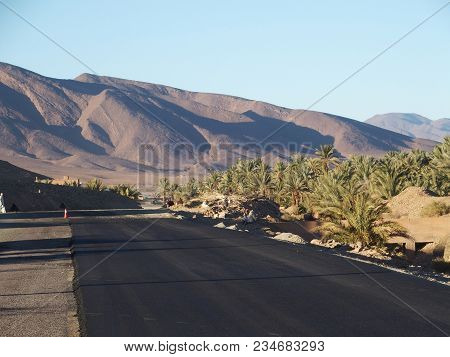 Asphalt Road, Green Palm Trees Oasis Landscapes In Central Morocco In Old Oulad Village Near Zagora