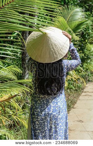 A Vietnamese woman in traditional dress (Ao Dai) walking on rural road. poster