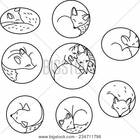 Set Of Cartoon Sleeping Foxes. Collection Of Cute Foxes. Vector Illustration For Children. Black And