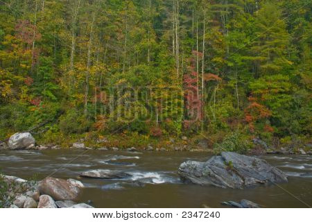 Chattooga River Fall Scenic