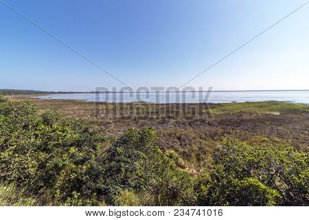 Landscape view through trees and wetland vegetation of the Saint Lucia estuary against blue sky in Zululand, South Africa poster