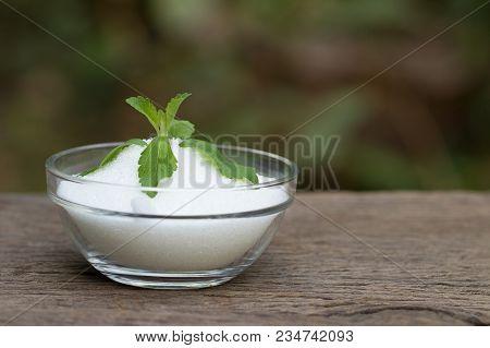 Stevia, Stevia Rebaudiana Bertoni, Stevia Rebaudiana, Stevia (genus, Asteraceae, Eupatorieae) And Ha