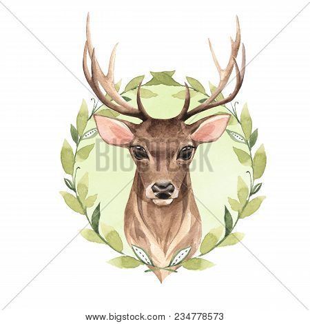 Noble Deer And Green Wreath. Watercolor Illustration