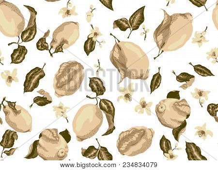 Sepia Seamless Pattern With Lemon Fruits And Citrus Blooming Flowers, There Are A Lot Of Elements Su