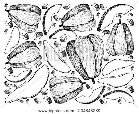 Vegetable And Fruit, Illustration Wall-paper Background Of Hand Drawn Sketch Of Fresh Chayote Or Sec