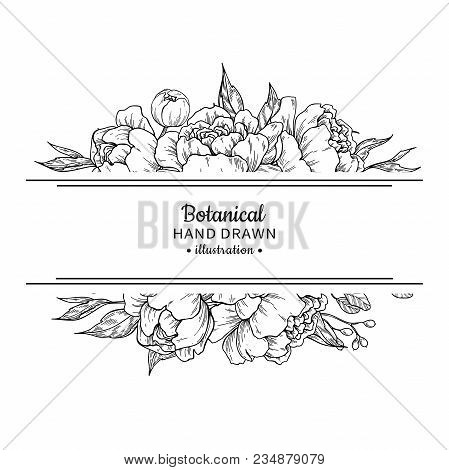Flower Vintage Border. Vector Peony And Roses Botanical Drawing. Isolated Sketch. Engraved Bouquet W