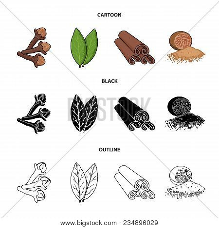 Clove, Bay Leaf, Nutmeg, Cinnamon.herbs And Spices Set Collection Icons In Cartoon, Black, Outline S