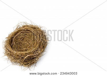 Bird Nest In Corner With The Focus In The Center Of The Nest