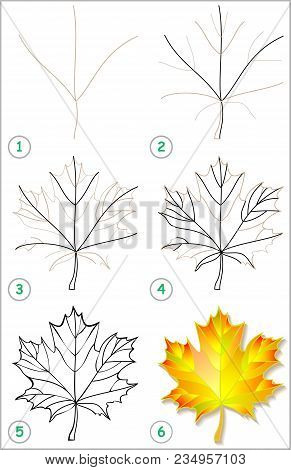 Page Shows How To Learn Step By Step To Draw A Maple Leaf. Developing Children Skills For Drawing An