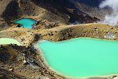 Wild volcano Tongariro National Park, New Zealand poster