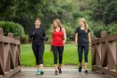 Group of women in their 30s walking together in the outdoors. Cute blond and fit women in their mid 30s who are active and working to stay healthy. Full length photo with copy space poster