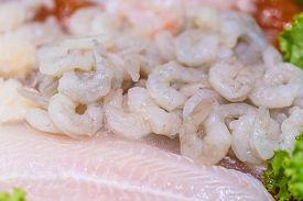 Fresh Shrimp Or Prawn Lay On Ice