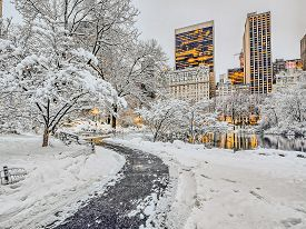 Snow Storm In Central Park In Lake March