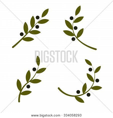 Set Of Green Vector Olive Branch Logo. Olive Oil Sign. Symbol Of Peace. Greek Religious Sign. Mythol