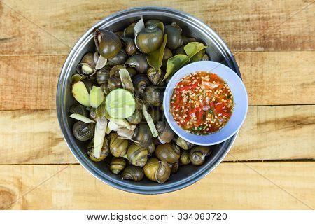 Pila Ampullacea Shellfish Freshwater Snail Nautilus Ammonite With Spicy Chili Sauce / Boiled Golden