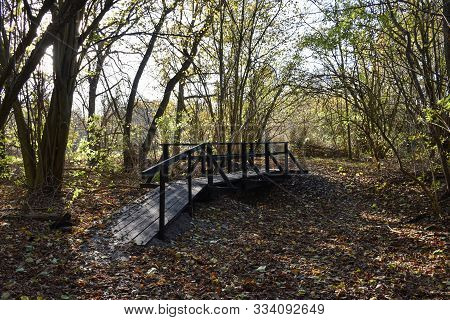 Fall Season Scene With A Wooden Footbridge In A Forest At The Swedish Island Oland