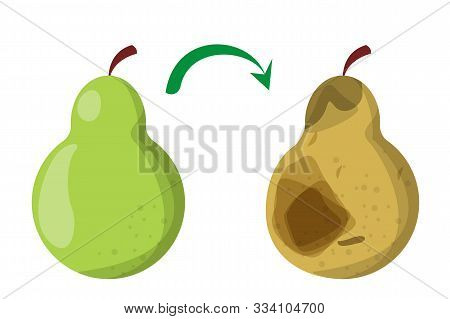 Healthy Good Pear Fruit Become Bad. Rotten Pear, Food Waste. Poisonous Garbage. Dirty Meal.