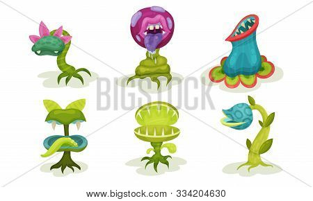 Set Of Carnivorous Plants. Vector Illustration On A White Background.