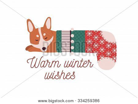Cute Little Dog Sleeping In Christmas Stocking. Warm Winter Wishes Vector Greeting Card Design Eleme