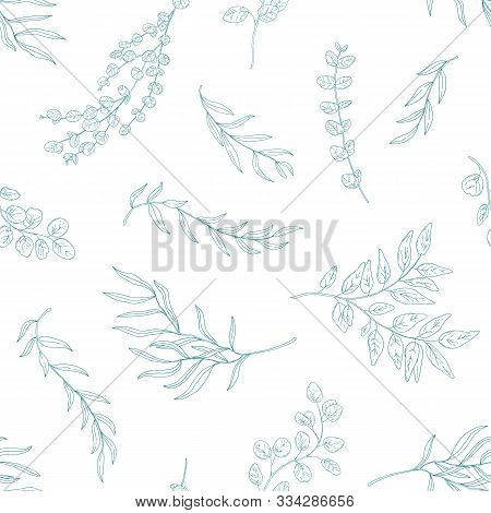 Eucalyptus Leaves Seamless Pattern. Hand Drawn Plant Branches And Twigs. Flora, Realistic Foliage Te