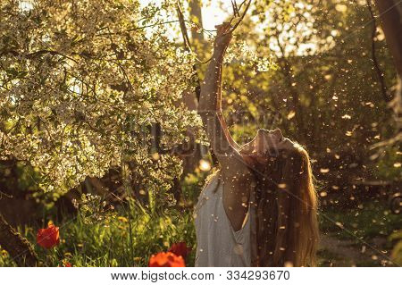 Girl In White Dress Sitting Among Flowers And Fluff With Threw Back Her Head Near Tulips In Sunset,