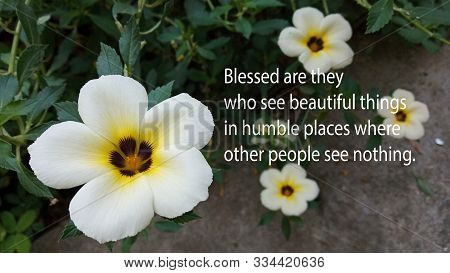 Inspirational Quote - Blessed Are They Who See Beautiful Things In Humble Places Where Other People