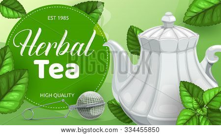 Herbal Tea Green Leaves, Teapot With Steam Of Hot Beverage And Infuser Mesh Spoon Vector Design. Dri