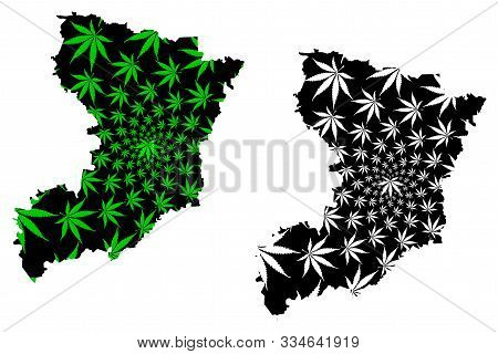 Rivne Oblast (administrative Divisions Of Ukraine, Oblasts Of Ukraine) Map Is Designed Cannabis Leaf