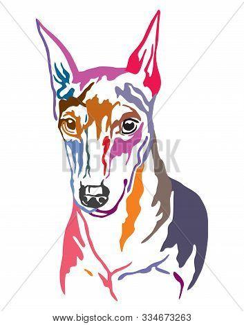 Colorful Decorative Contour Outline Portrait Of Dog Miniature Pinscher, Vector Illustration In Diffe