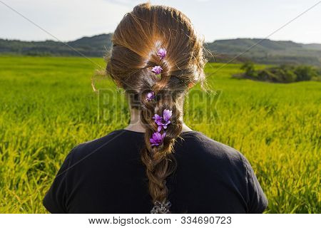Rear View Of The Back And Head Of A Young Red-haired Woman With A Braid With Flowers. Sitting On The