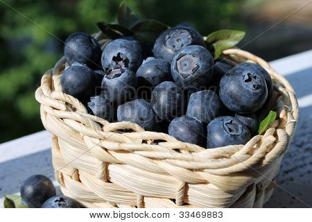 blueberries and  basket