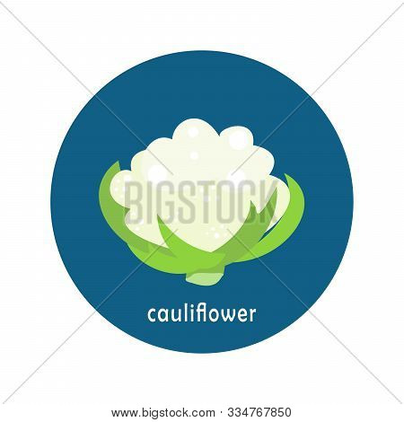 Vector Cauliflower Icon Isolated On White Background.  Flat Blue Circle Icon With Vegetable. Healthy