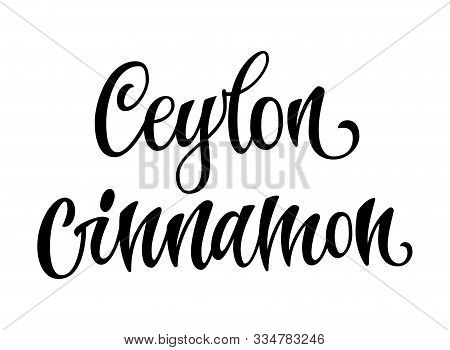 Vector Hand Drawn Calligraphy Style Lettering Word - Ceylon Cinnamon. Labels, Shop Design, Cafe Deco