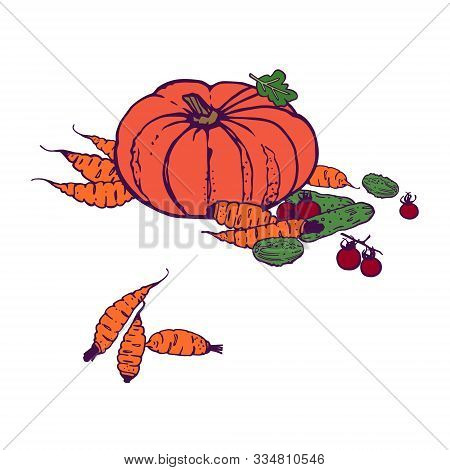 Organic Shop Ilustration. Copy Space. Variety Of Decorative Vegetables Hand-drawn In Cartoon Style.