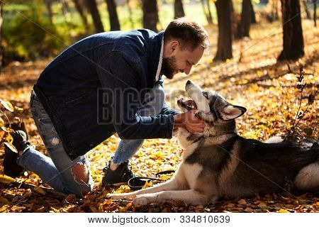 Hipster Stylish Guy Hug His Husky Dog In Autumn Forest.pedigree Dog Concept. Best Friends. Unconditi