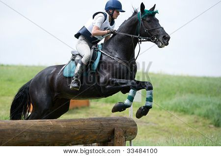 Woman eventer on horse is overcomes the Log fence