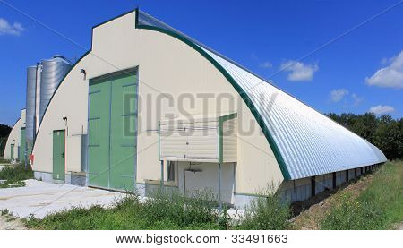 Shed Chicken Farm