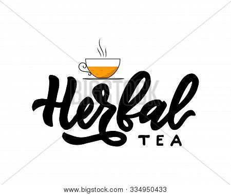 Herbal Type Of Tea With Cup. Hand Calligraphy Lettering With Cups. Vector Illustration. Template Of