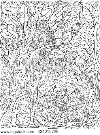 Owls On Tall Tree Branch In Forest With Small Fox Below Colorless Line Drawing. Birds On Branches Wi