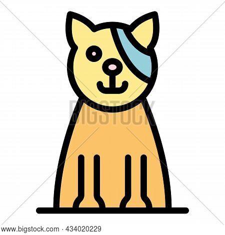 Cat Eye Bandaged Icon. Outline Cat Eye Bandaged Vector Icon Color Flat Isolated
