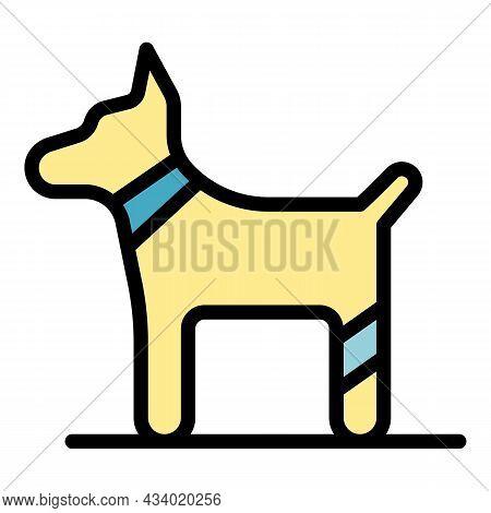 Dog Bandaged Paw Icon. Outline Dog Bandaged Paw Vector Icon Color Flat Isolated
