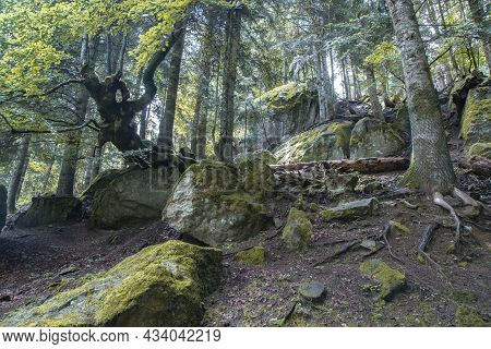 Landscape Showing Some Rocks And Trees In Aran Park In Catalonia