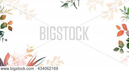 Herbal Banner Arranged From Leaves And Lights. Paradise Plants, Greenery And Hydrangea Card