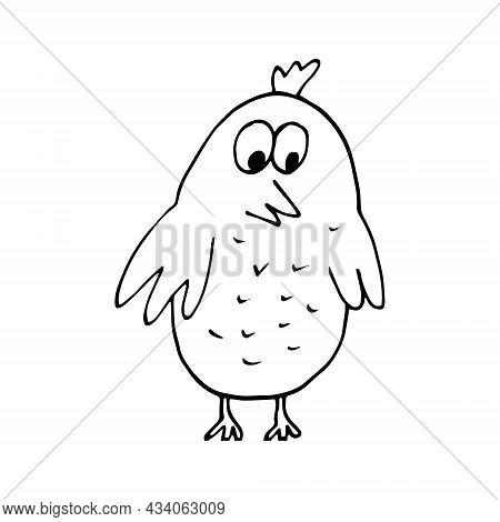 Bird Chick Hand Drawn Doodle. Vector, Scandinavian, Nordic, Minimalism, Monochrome. Cute Baby Print