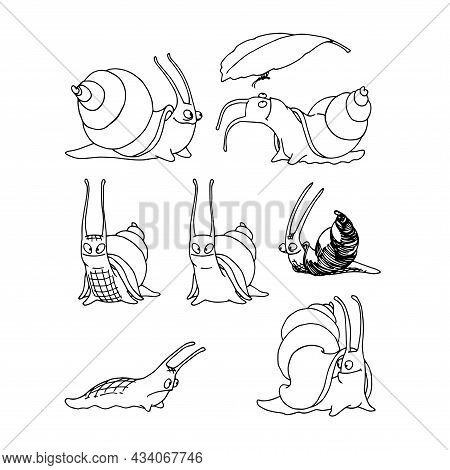 A Set Of Cute Snails With Horns And Shells, An Aquarium Pet, Funny Characters, A Vector Illustration