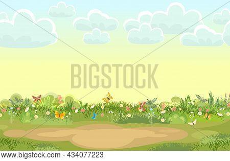 Sandy Glade. Summer Meadow. Flowers. Green Succulent Grass Close Up. Grassland. Place On The Field.